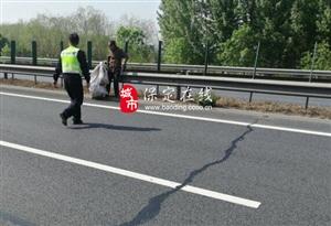 高速交警高�大�及�r消除一起行人上高速的安全�[患