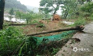 贵州惠水现入汛首场大暴雨