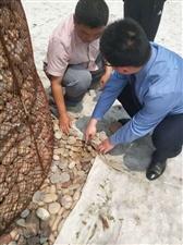 清丰县检察院调查走访垃圾现场,保护生态环境