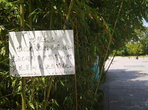 背后故事令人心碎!在南郑一公园摘枇杷被保安训斥  男子气不过发帖声讨