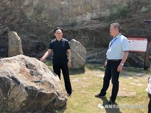 黄冈大别山世界地质公园在龙潭峡谷举行揭碑仪式