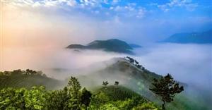 新县取名寓意获得新生,是河南最南端的县城,被称为中原南门