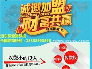 遠東上市公司微盤招代理特別會員微會員公司