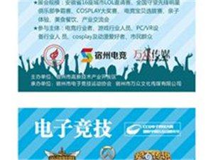 中国.宿州CCG电子竞技大赛