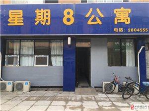 精装修星期8公寓出租500元/月2000平米