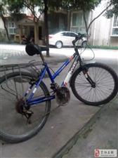出售旧自行车一辆。