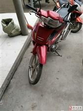 低价出售一辆弯梁摩托车