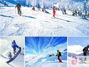 【冰雪天地】哈尔滨、亚布力、中国雪乡双飞六日游