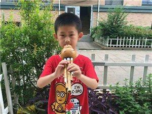 專業培訓鋼琴,古箏,吉他,葫蘆絲等各類樂器