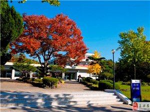 雙十一韓國留學 贈送韓語初級課程
