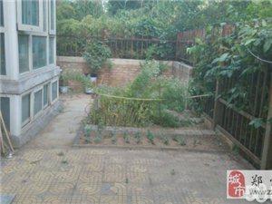 (出售) 绿都城多层一楼带40平米院子小三房精装北苑直售