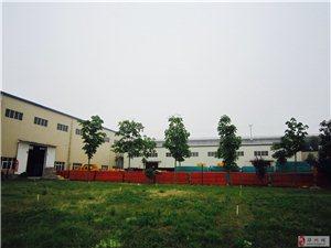 郑州经开区位置优越4000平米厂房出租可分割