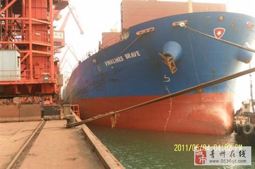 山東通達國際船舶管理有限公司
