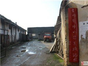 贵州苗王城酒业诚招合作伙伴