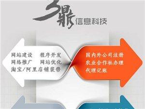 專業建網站微信服務APP制作免費推廣優化網絡