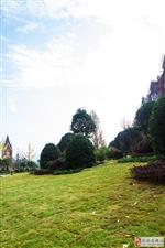 一、二期小区花园实景拍摄
