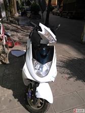 出售白色迅鹰踏板摩托车一辆