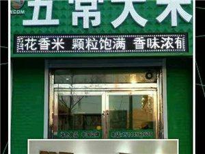好消息,五常大米落户辉南朝阳镇