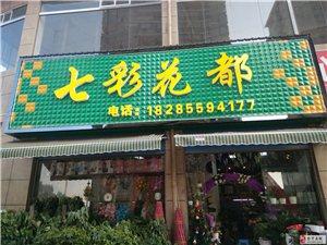 七彩花都专卖店