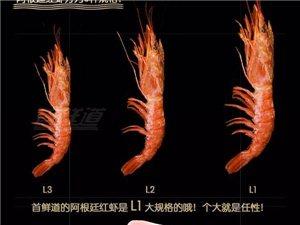 阿根廷红虾-大连直邮150一盒