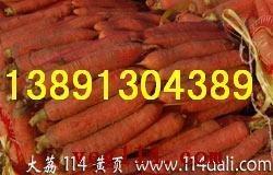 陜西大荔萬畝優質紅蘿卜產地批發價格