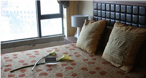 山水天域精装二室一厅出租5500元/月