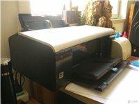 爱普生R290六色彩色照片打印机A4页面
