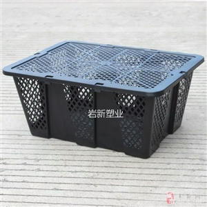 方形带盖水果周转篮处理