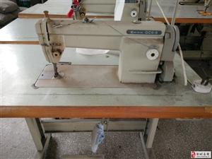 因公司产品换代升级,低价处理一批缝纫机设备。