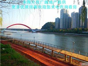 桃江御景,123平米三房,送二阳台,免营业税