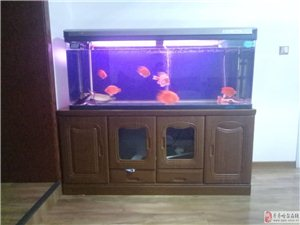 出售1.5米水族箱