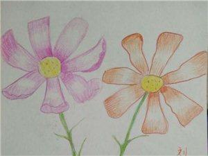 臨泉藝苑畫坊,帶領孩子們在書畫藝術天空飛翔