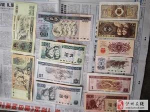 泸州地区交流老钱币老家具老物件老酒