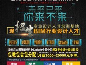現招生BIM行業設計人才