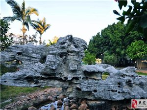 广东英石厂家提供各种形状的天然景观石和天然园林石