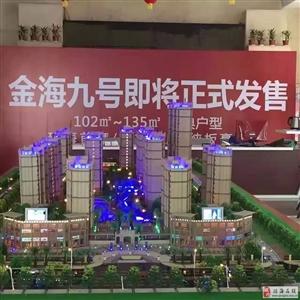 出售金海九号2房改3房仅要5800-7500平米