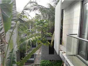 亚洲湾圣陶沙全新别墅对外出租、一个月起租