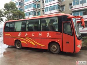 金龙35座大客车出售