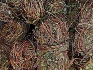 雞骨草價格136.7588.2653最新雞骨草銷售