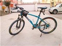 交通工具,自行車/配件