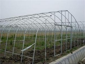 滁州圣源蔬菜大棚鋼管廠