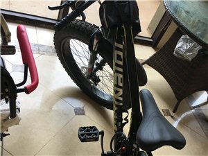 大轮胎单车