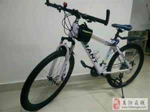 交通工具,自行车/配件
