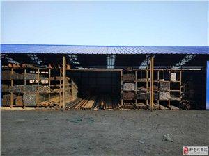 常年出售钢材,大棚管