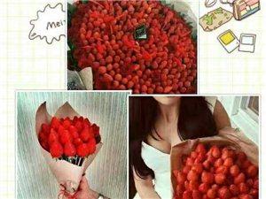 涡阳蒙关草莓第七界采摘节正在进行中