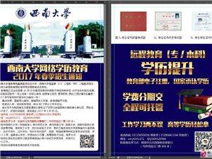 西南大學網絡學歷教育 2017年春季招生通知