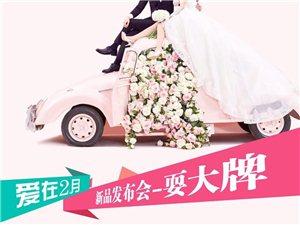 帆摄影幸福结婚季-婚动全城