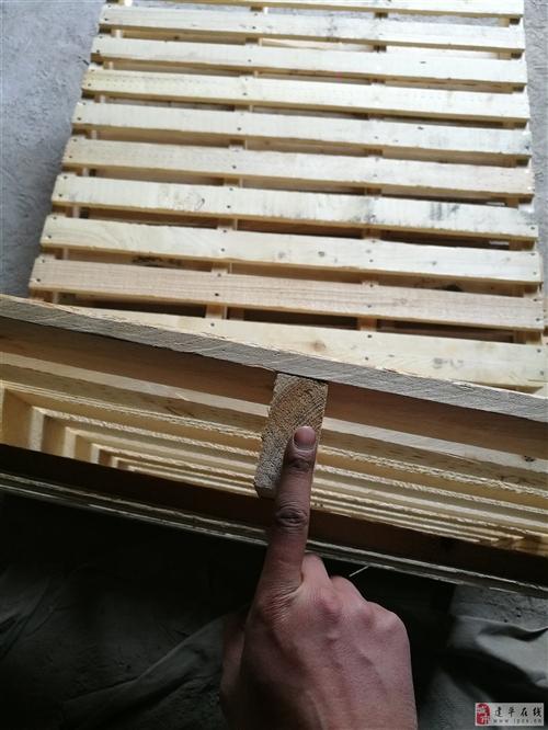 出售用过一次的实木拍子全松木全进口出口不用打码