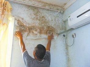 专业房屋渗水漏水精准维修