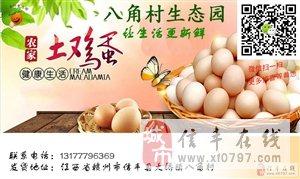 【土鸡蛋】信丰大桥农家土鸡蛋脐橙园散养,新鲜正宗
